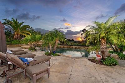 San Diego Single Family Home For Sale: 14126 Caminito Vistana