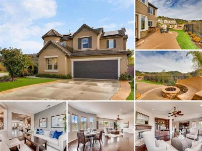 San Marcos Single Family Home For Sale: 607 Weatherstone Way