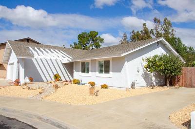 Oceanside Single Family Home For Sale: 4076 Via Rio Ave