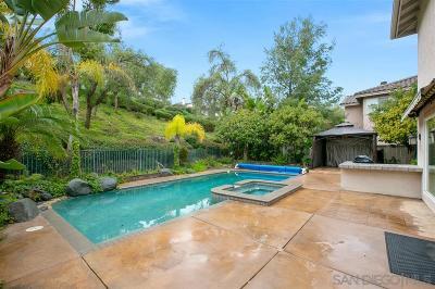Escondido Single Family Home For Sale: 1047 Calle De Alcala