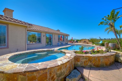 Fallbrook Single Family Home For Sale: 2108 Summer Bloom Ln