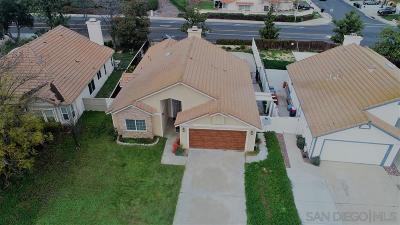 Murrieta, Temecula Single Family Home For Sale: 29742 Calle Pantano