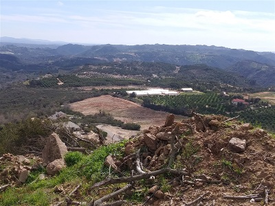 Riverside County Residential Lots & Land For Sale: 21990 NW Carancho Rd #2