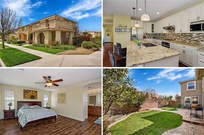 Chula Vista Single Family Home For Sale: 1534 Hunters Pointe Ave