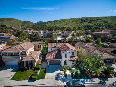 Chula Vista Single Family Home For Sale: 395 Plaza Toluca