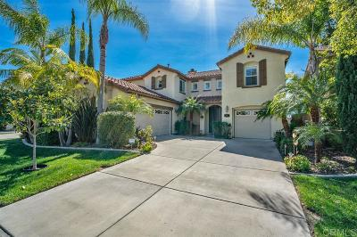 Oceanside Single Family Home For Sale: 3271 Toopal Dr.