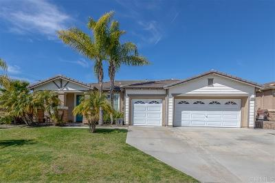 Riverside County Single Family Home For Sale: 29039 Oak Creek Rd