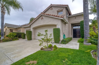Carlsbad Single Family Home For Sale: 2918 Avenida Valera