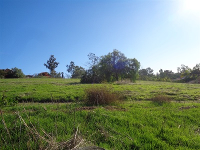 Vista Residential Lots & Land For Sale: 2145 Dons Way