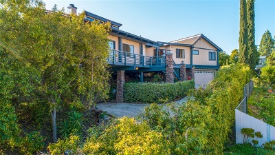 Single Family Home For Sale: 13242 Edina Way