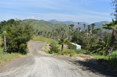 Escondido Residential Lots & Land For Sale: 2680 Canyon Crest