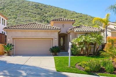 San Marcos Single Family Home For Sale: 1126 Via Vera Cruz