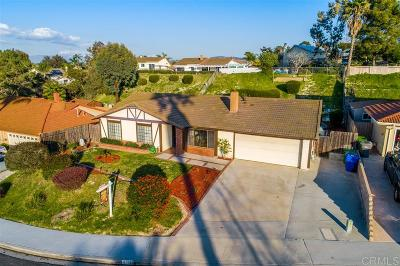 Oceanside Single Family Home For Sale: 5234 Rancho Court