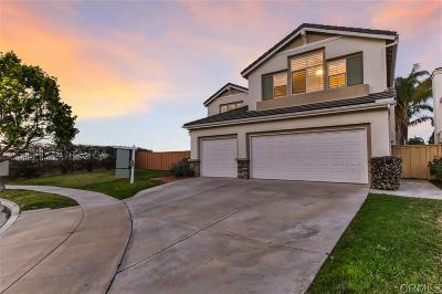 San Diego Single Family Home For Sale: 11037 Sunny Mesa Road