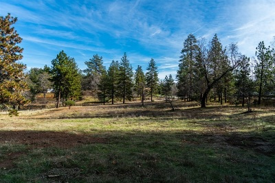 Julian Residential Lots & Land For Sale: Blue Jay Dr. #58-60