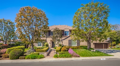 Carlsbad Single Family Home For Sale: 3590 Camino Arena