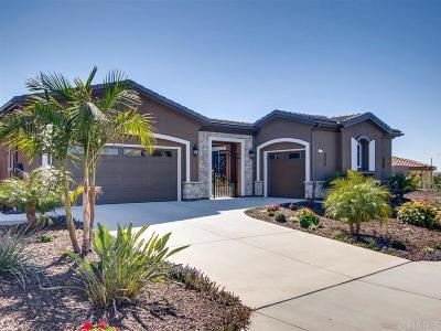 Oceanside Single Family Home For Sale: 1058 Village Dr
