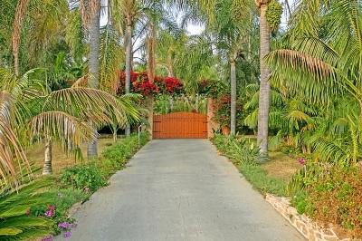 Oceanside,  Carlsbad , Vista, San Marcos, Encinitas, Escondido, Rancho Santa Fe, Cardiff By The Sea, Solana Beach Rental For Rent: 1703 Sienna Canyon Drive