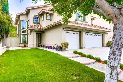 Murrieta, Temecula Single Family Home For Sale: 32161 Paseo San Esteban