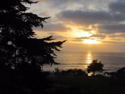 Vista Del Mar, Nob Hill Rental For Rent: 155 15th St #20