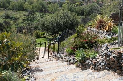 Rancho Santa Fe Single Family Home Contingent: 7977 Camino De La Dora