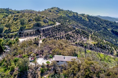 Escondido Single Family Home For Sale: 1232 Windsong Ln
