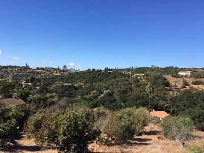 Fallbrook Residential Lots & Land For Sale: 1925 Wilt Road #107-210-