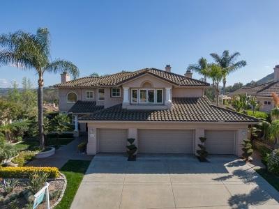 Escondido Single Family Home For Sale: 241 Camino Del Postigo