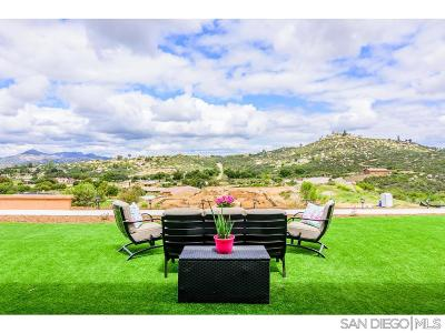 Single Family Home For Sale: 12853 Vineyard Crest