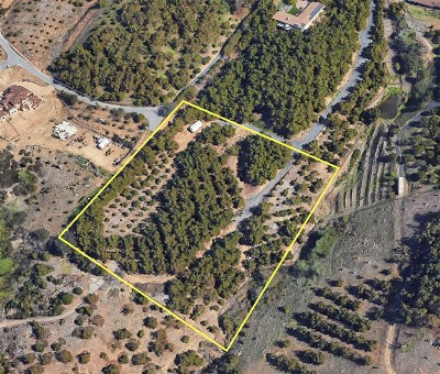 Fallbrook Residential Lots & Land For Sale: Canonita #3