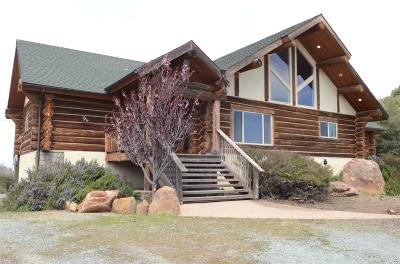 Single Family Home For Sale: 777 Pineoak Ridge Rd