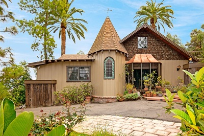 La Mesa Single Family Home For Sale: 9633 El Granito Ave