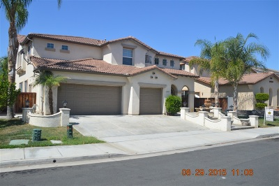 Murrieta, Temecula Single Family Home For Sale: 43931 Via Montalban