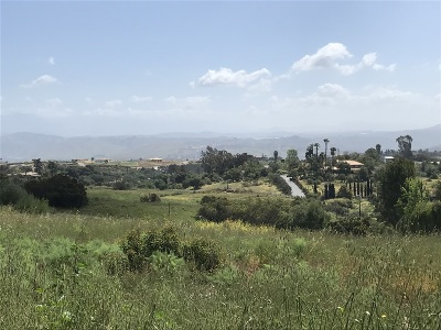 Fallbrook Residential Lots & Land For Sale: Camino Corto #1