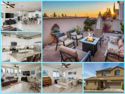 San Marcos Single Family Home For Sale: 1497 Chert Drive
