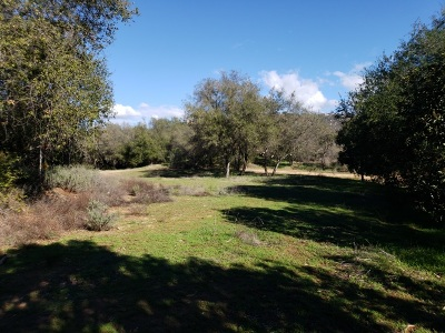 Fallbrook Residential Lots & Land For Sale: Camino Rainbow