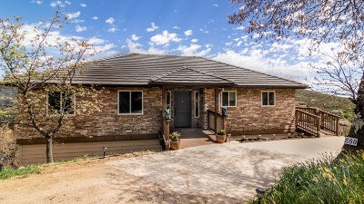 Single Family Home For Sale: 850 Knob Hill Dr