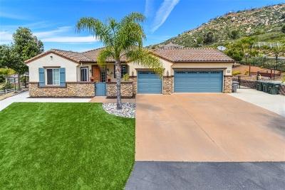 Escondido Single Family Home For Sale: 10248 Rayford