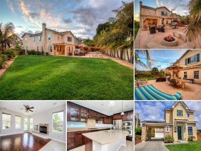 Carlsbad Single Family Home For Sale: 6438 Live Oaks Dr