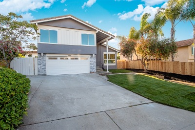 Encinitas Single Family Home For Sale: 138 Cerro