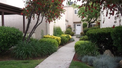San Diego County Townhouse For Sale: 23913 Green Haven Lane