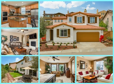 San Marcos Single Family Home For Sale: 1104 Festival