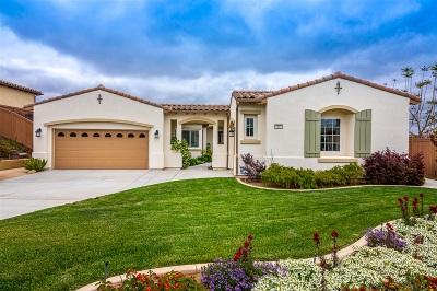 Oceanside Single Family Home For Sale: 1142 Village Drive