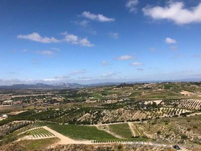 Murrieta, Temecula Residential Lots & Land For Sale: Calle Las Lomas