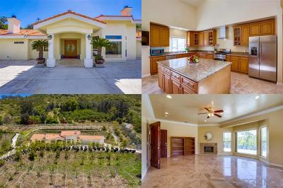 Fallbrook Single Family Home For Sale: 525 Stewart Canyon Rd