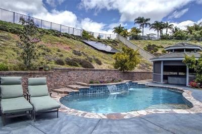 San Marcos Single Family Home For Sale: 1178 Adena Way