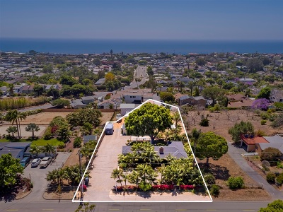 Encinitas Single Family Home For Sale: 920 Hymettus Ave