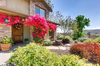 Escondido Single Family Home For Sale: 20555 Fortuna Del Sur
