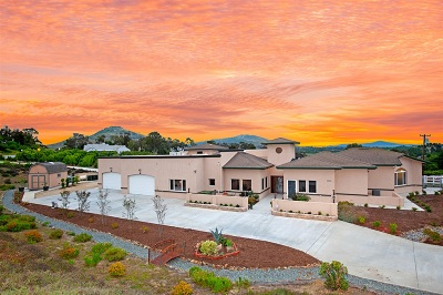 Encinitas Single Family Home For Sale: 3701 Fortuna Ranch Rd