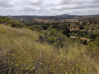 Valley Center Residential Lots & Land For Sale: Couser Canyon 4.28 Acres #30